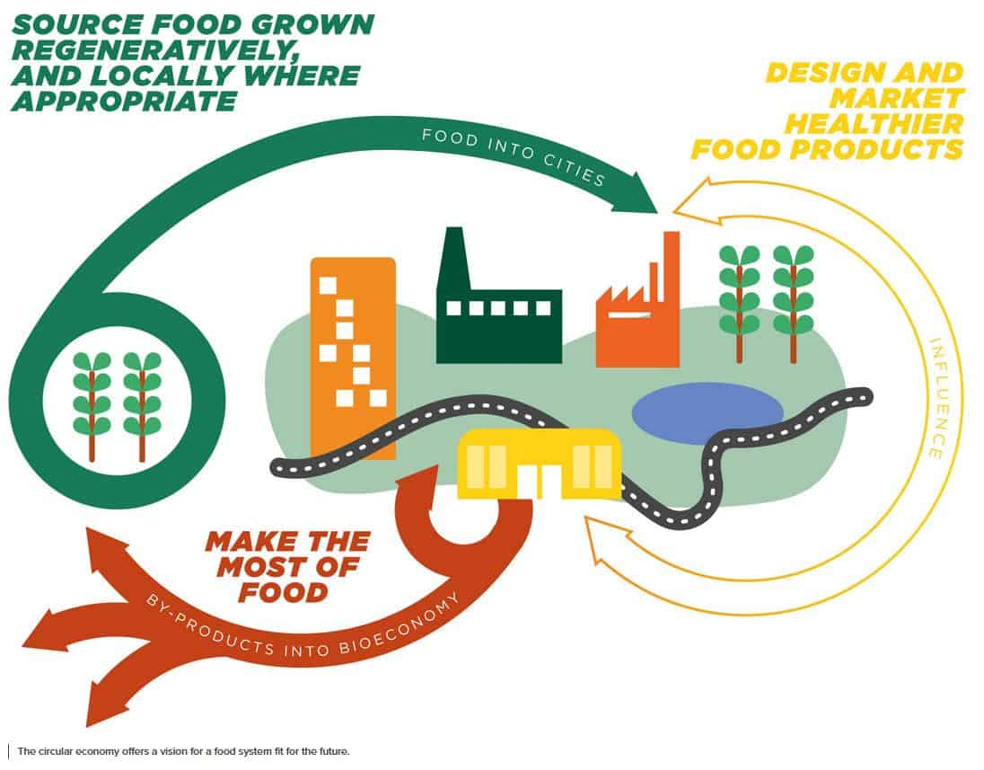 Food System Ambitions 2020